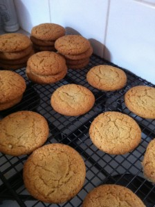 Shows piles of ginger biscuits cooling on a baking rack